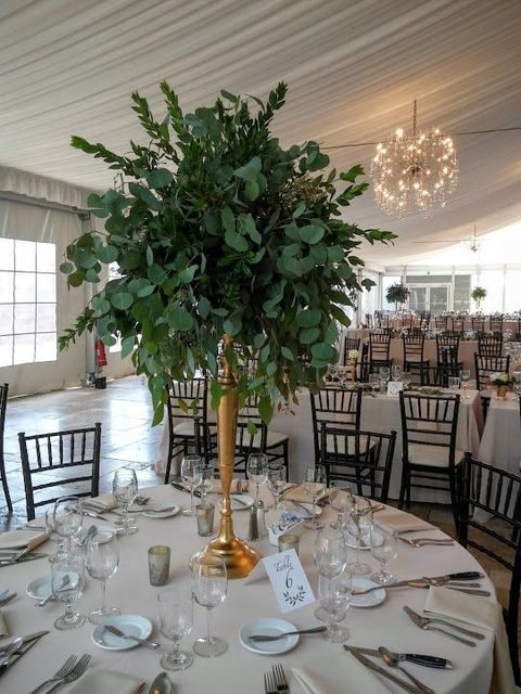 tall foliage centerpiece with myrtle, seeded eucalyptus, and silver dollar eucalyptus