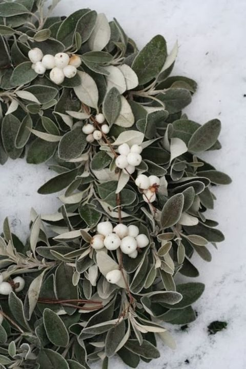 waxberry and mistletoe wreath