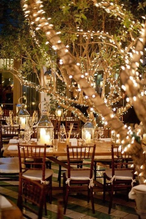 wrapping trees in lights always makes a statement and it is easy and inexpensive