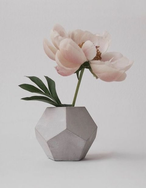 faceted concrete vase with a large bloom can be a cool centerpiece
