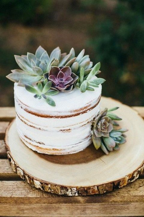 single-tier semi naked cake topped with succulents