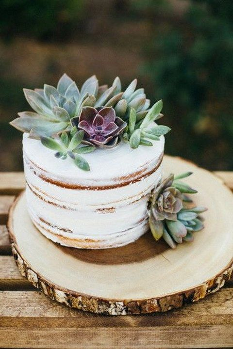 Single tier semi naked cake topped with succulents