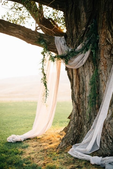 a tree in your backyard can be turned into an awesome ceremony spot, just add a greenery garland and some ethereal fabric