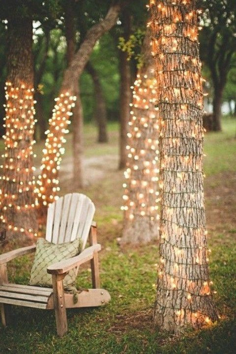 cover the trees with lights to create an ambience