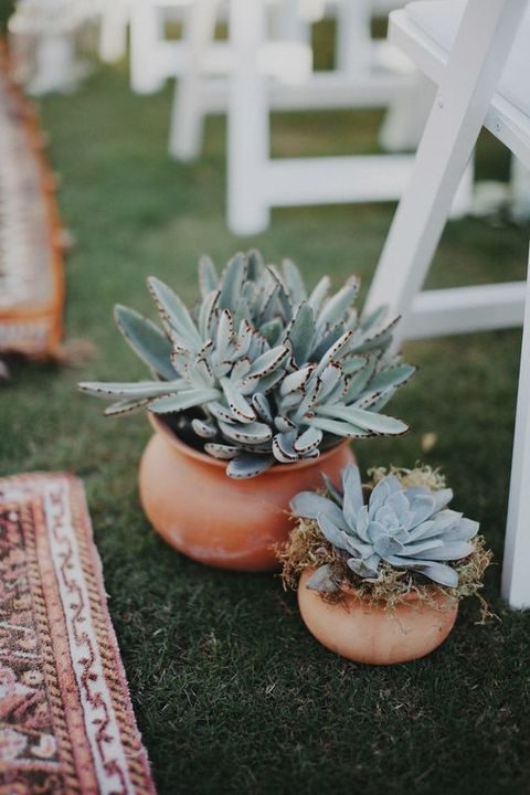 potted succulents and other plants can be a nice aisle decoration