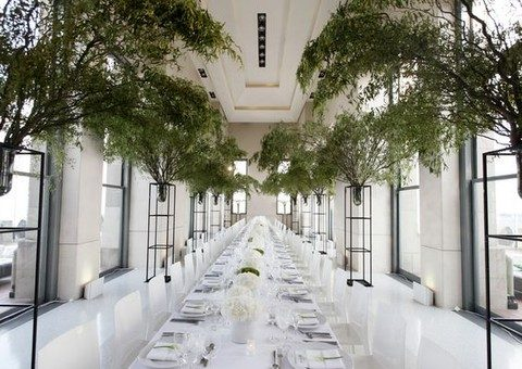 green branches for decorating the reception