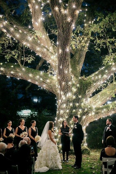 light strings covering the whole tree is a chic idea