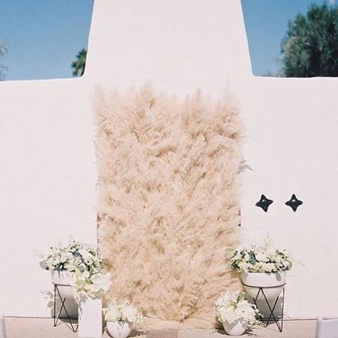 pampas grass, white flowers for a gorgeous wedding backdrop