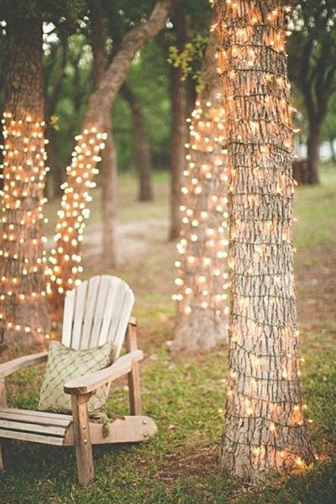 wrap every tree with lights to create a cozy atmosphere