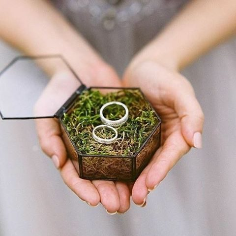 a glass hex ring box filled with moss