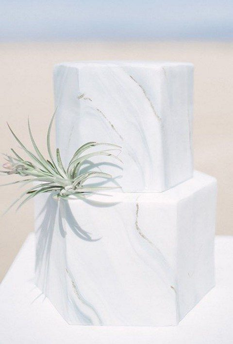 hexagon marble wedding cake with an air plant
