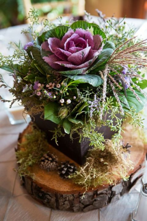 a box with herbs, flowers and cabbages and moss