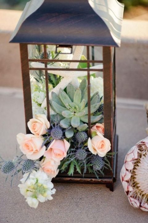 a lantern filled with blush roses, thistle and succulents and a star fish