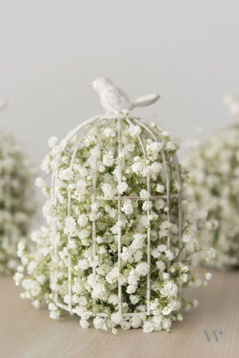 a tine cage with a bird on top filled with baby's breath