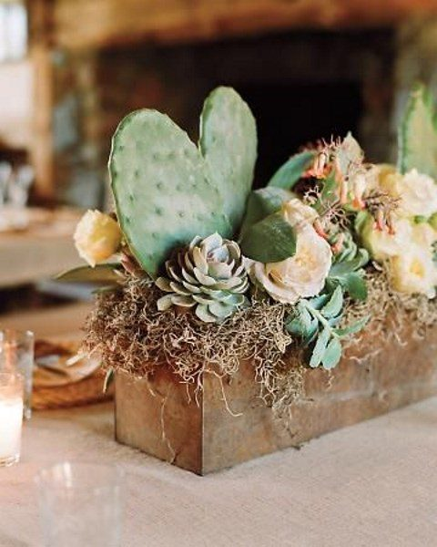 a metal box with cacti, succulents and blooms