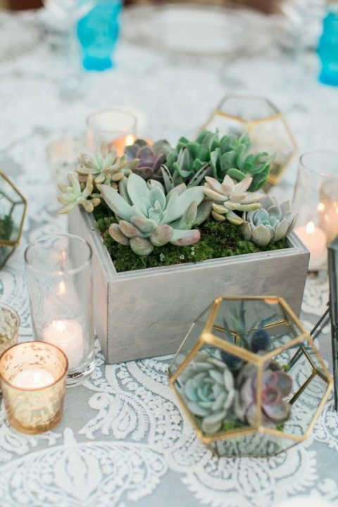a whitewashed wooden box with moss and various succulents