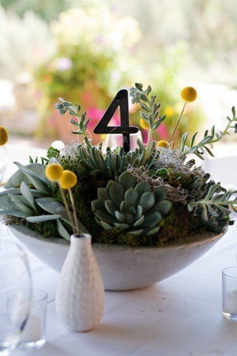 a concrete bowl with succulents, billy balls and a table number
