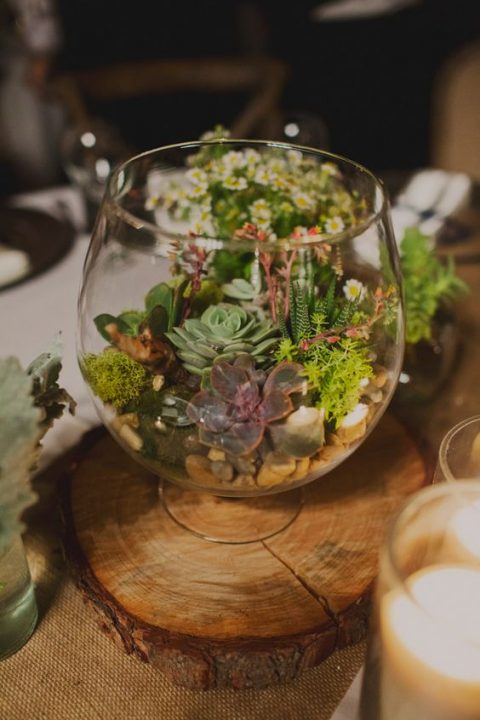 a glass bowl with succulents, moss and pebbles