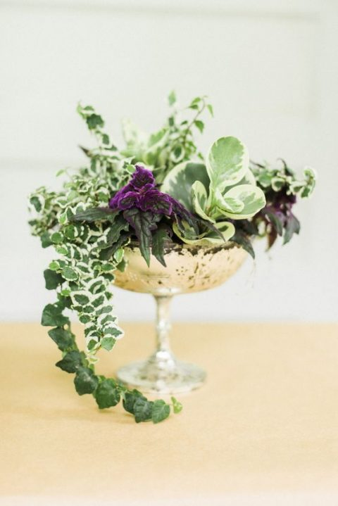 a vintage silver bowl with various cascading greenery