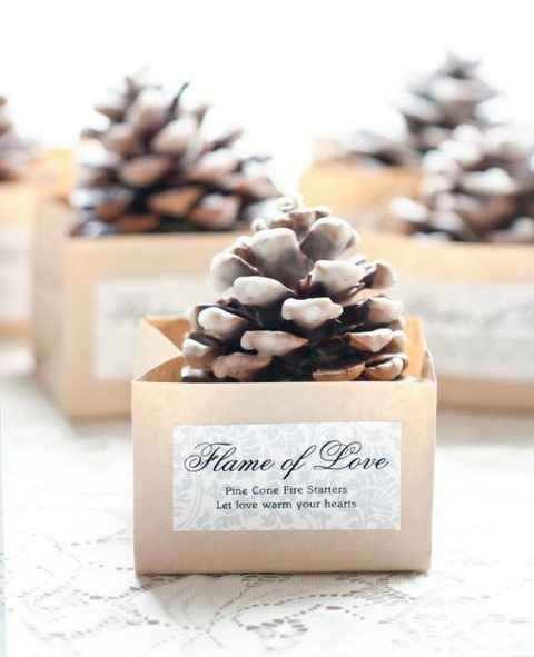 pinecone fire starters in little boxes are ideal favors