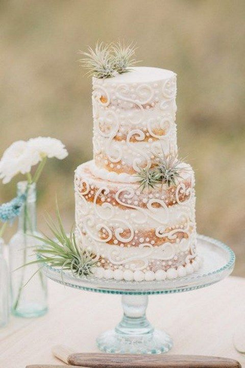a naked wedding cake with cream decor and airplants