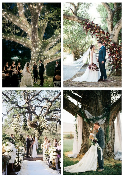 27 Romantic Wedding Tree Backdrops And Arches