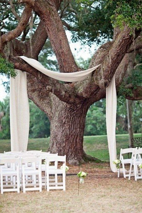 some neutral airy fabric hanging as an arch from the tree