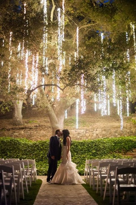 vertical light clusters hanging down from the tree for a magical backdrop