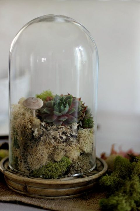 IKEA Harliga glass dome is used to make a woodland wedding centerpiece with mushrooms, moss and succulents