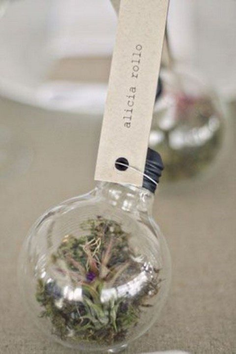 a light bult terrarium with air plants as a creative place card holder for a wedding tablescape