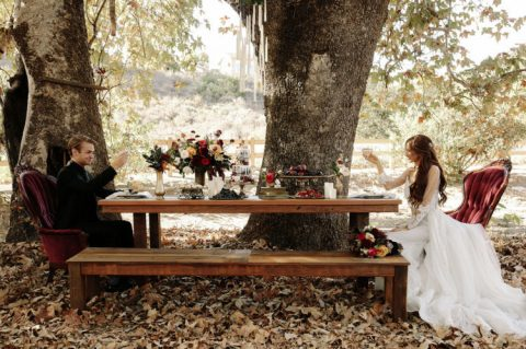 a rustic tablescape with burgundy velvet chairs right in the forest