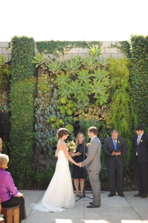 a living wall of succulents and air plants for a lush outdoor and even tropical forest feel at the wedding