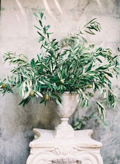 an elegant olive branches and olives centerpiece in a vintage urn for a chic Italian wedding