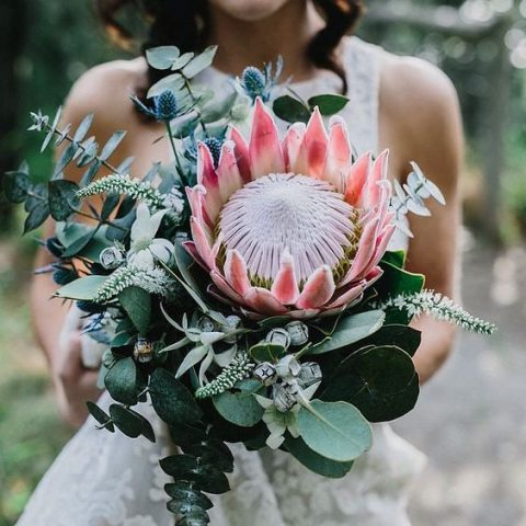 a chic and modern wedding bouquet with a king protea, eucalyptus, blue thistles and some pale herbs