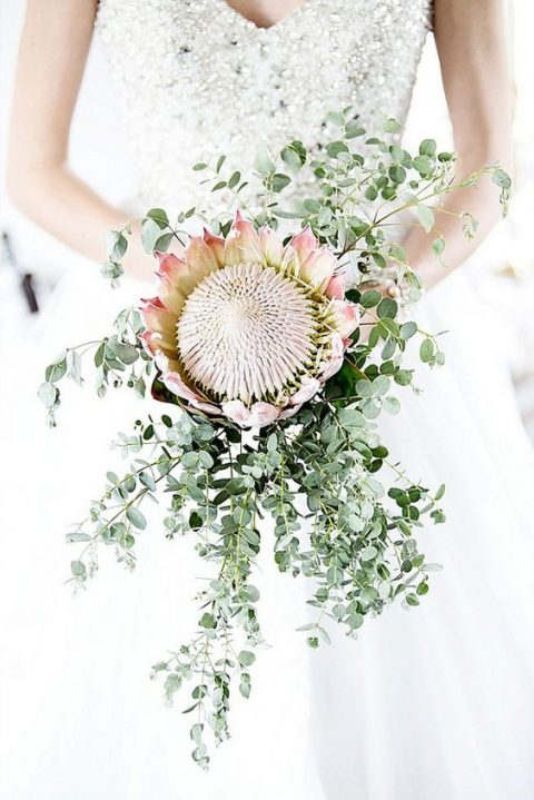 a simple wedding bouquet with a king protea and cascading greenery around it