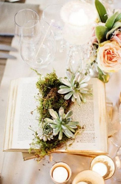 an open book with moss and succulents is a very refreshing idea