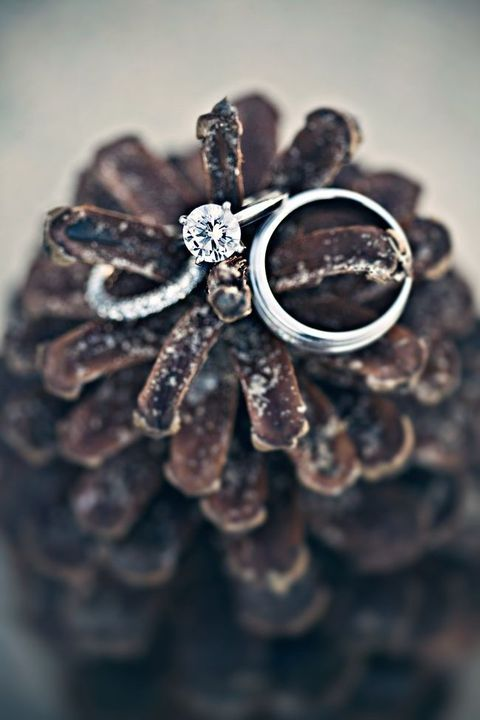 57 Pinecone Decor Ideas For Your Wedding