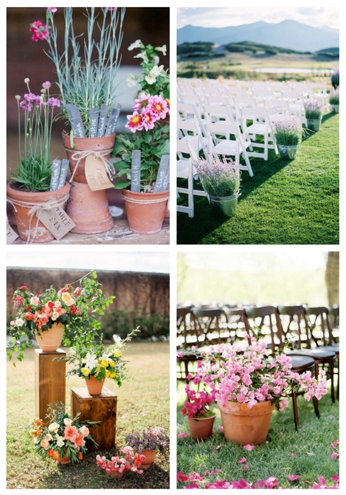 61 Cutest Potted Plants Ideas For Your Wedding